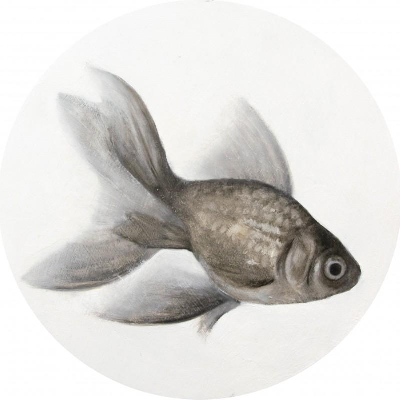 fish VII