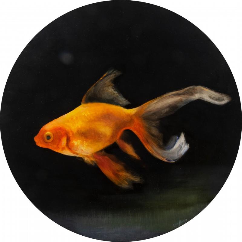 fish VI